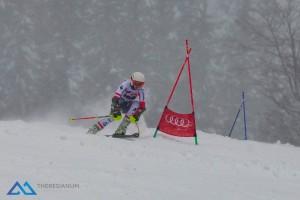 Skirennen 2018/2019